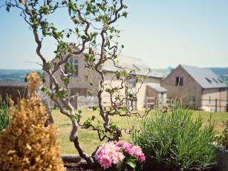 The Dairy a former keepers cottage 2 bedrooms - Kilmington vacation rentals