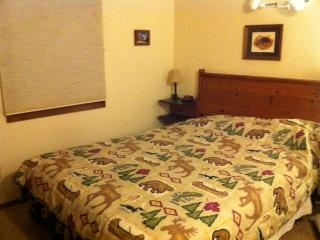 Mt Crested Butte condo with Great views - Crested Butte vacation rentals