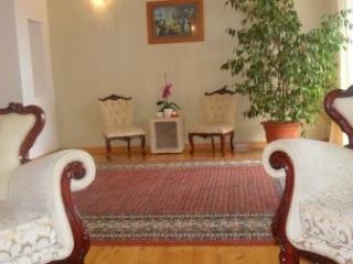 Apartment Citrin Makarska Croatia - Makarska vacation rentals
