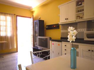 Confortable apart pool & garden - San Bartolome de Tirajana vacation rentals