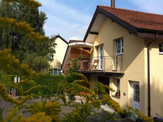 Newly renovated and luxurious cottage - Tolochenaz vacation rentals