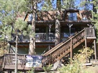 Front of Cabin - Cougar's Tree House - Hot Tub, Satellite Dish Netw - Big Bear Lake - rentals