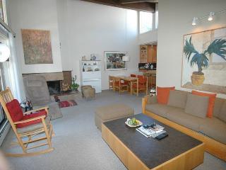 Gant Unit 301 - Aspen vacation rentals