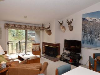 700 Monarch Unit 301 - Aspen vacation rentals