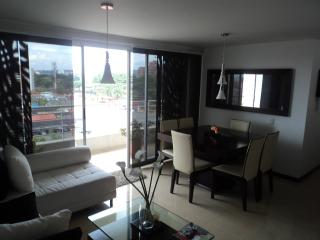 Nice Furniture Aparment Cali - Cali vacation rentals