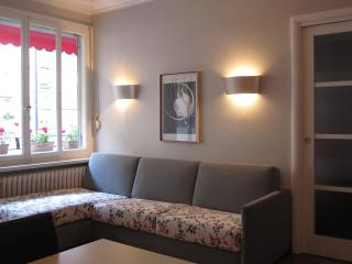 Absolutely lovely & comfortable place-town center - Geneva vacation rentals