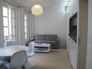 Modern 1 Bedroom Paris Apartment - 1st Arrondissement Louvre vacation rentals