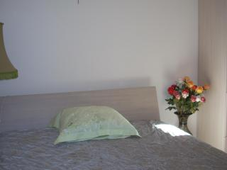 Cosy two room apartment in Palanga - Palanga vacation rentals