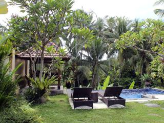 One Bed Room Pool Villa Rental Ubud Nice View - Ubud vacation rentals