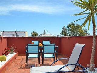 Triana Terrace | One-bedroom with roof-terrace - Province of Seville vacation rentals