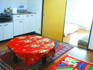 2-4 Sleep 35 sq.meter apartment in central Tokyo - Shinjuku vacation rentals