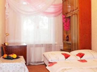 2 separate room apartment in historical center of Dnepropetrovsk - Dnipropetrovsk vacation rentals