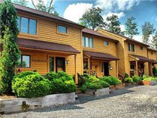 Deerfield 042 - Image 1 - Canaan Valley - rentals