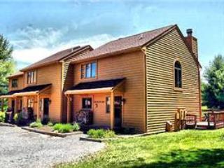 Deerfield 051 - Image 1 - Canaan Valley - rentals