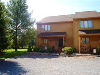 Deerfield 052 - Image 1 - Canaan Valley - rentals