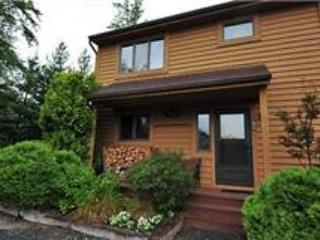 Deerfield 065 - Canaan Valley vacation rentals
