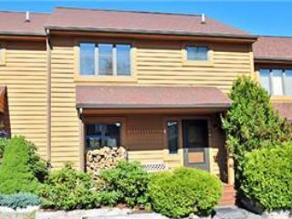 Deerfield 070 - Canaan Valley vacation rentals