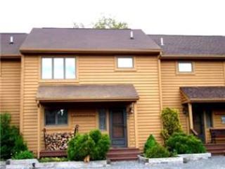 Deerfield 106 - Canaan Valley vacation rentals