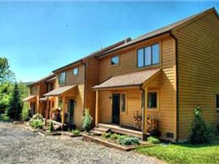 Deerfield 122 - Canaan Valley vacation rentals
