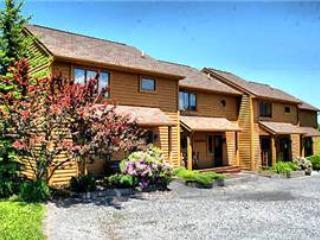 Deerfield 134 - Canaan Valley vacation rentals