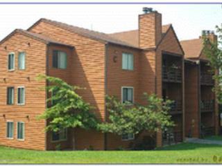 Herzwood Condo  C-102 - Canaan Valley vacation rentals