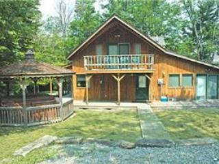 NF 01 - 175 Slopeside Rd - Image 1 - Canaan Valley - rentals