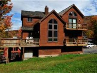 NF 38  -  330 Slopeside Road - MidWk Rates! - Image 1 - Canaan Valley - rentals