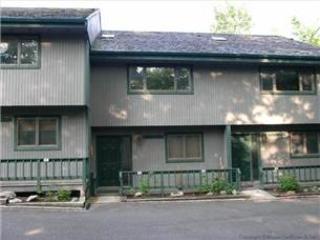 Northwoods B5 - Image 1 - Canaan Valley - rentals