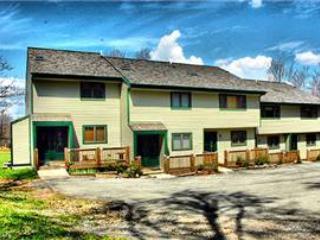 Northwoods C1 - 19 Cross Rd. Ct. - Image 1 - Canaan Valley - rentals