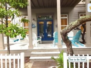TOES IN THE SAND - Santa Rosa Beach vacation rentals