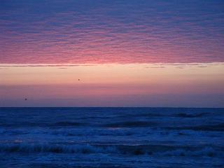 Gorgeous Beachfront Home -- Surfside Beach, Texas - Surfside Beach vacation rentals