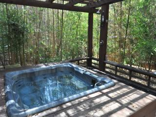 The Austinite #B - 2/1 w/ awesome deck and hot tub - Austin vacation rentals