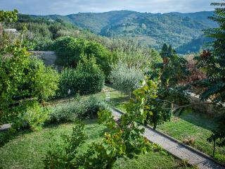 14th Century cute flat with garden - Casa Foresti - Bettona vacation rentals