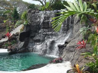 Tropical Paradise Home W Heated Pool, Spa, Falls1B - Holualoa vacation rentals