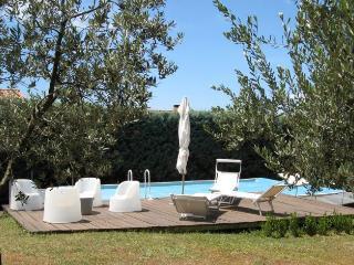 Farmhouse Rental in Tuscany, Montalcino - Villa Montalcino - Montalcino vacation rentals