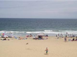 A-206 Dolphins View - Image 1 - Virginia Beach - rentals