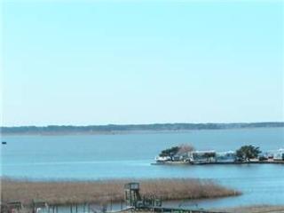 B-330 Sweet Virginia Breeze - Image 1 - Virginia Beach - rentals