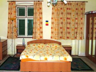 B&B accommodation in traditional Saxon house near Sighisoara - Tirgu Mures vacation rentals