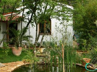 ecco villa sara in Medulin Croatia - Medulin vacation rentals