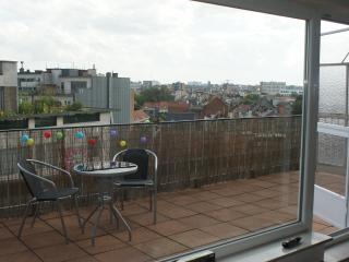 Sunny Penthouse in center of Antwerp - Antwerp vacation rentals