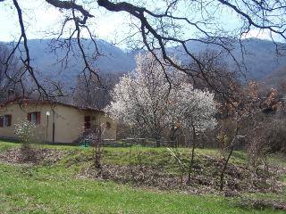 Bed and Breakfast - Bagnara di Romagna vacation rentals
