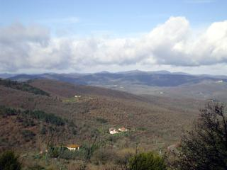 In the heart of Tuscany, in the countryside but close to the beauty of Siena, Arezzo and Florence - Bucine vacation rentals