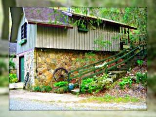 Mountain Cabin on Trout River-A Breath of Fresh Ai - Robbinsville vacation rentals