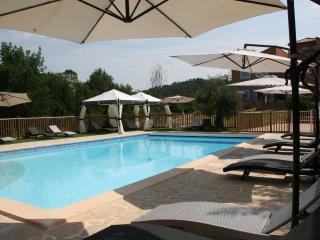 Gite du Laurier, Charming 1 Bedroom Cottage in Brignoles - Saint-Martin-de-Bromes vacation rentals