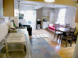 29a: Battersea 2 Bedroom Apartment with Terrace - Bishop's Castle vacation rentals