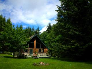 B & B Style Country Island Retreat, Quiet, 5 acres - Shelton vacation rentals