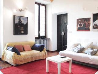 Apt. center city - cinema museum - egyptian museum - Torino vacation rentals