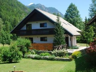 Holiday House Trata - Apt 2 - Spacious apt (95 m2) - Kranjska Gora vacation rentals
