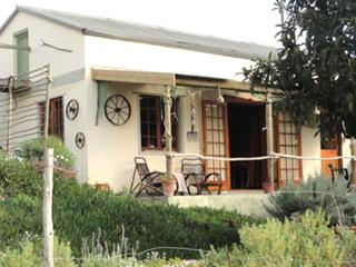Driftwood Cottage - Overberg vacation rentals