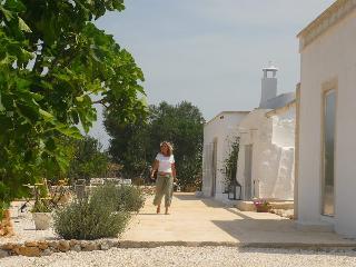 BB  Ostuni Priscilla Lamia tra gli ulivi campagna - Ostuni vacation rentals